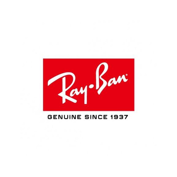 【RayBan】 レイバンの大人気モデル:ウェイファーラー新作入荷! 【調光】