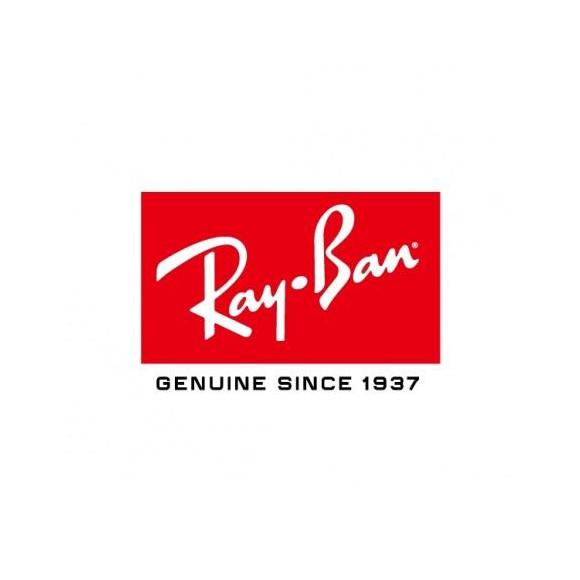 【RayBan】レイバン大人気モデル:ウェイファーラー再入荷です!【調光レンズver.】
