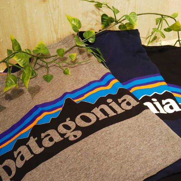 NEW ARRIVAL☆patagonia ロゴT入荷!!
