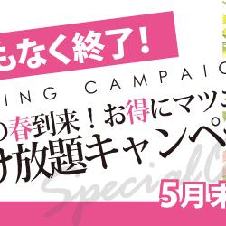 大好評の春のつけ放題キャンペーン!残り僅か!まだ間に合います、ご予約はお早めに!!!