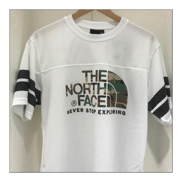 送料無料 ザ・ノースフェイス 【THE NORTH FACE】S/S MESH CAMO LOGO TEE 半袖メッシュカモロゴT  NT31801M