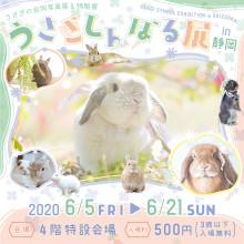 【6/5(金)~】「うさぎしんぼる展」開催!