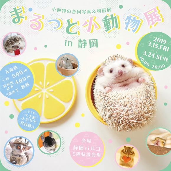 【3/15(金)~】まるっと小動物展