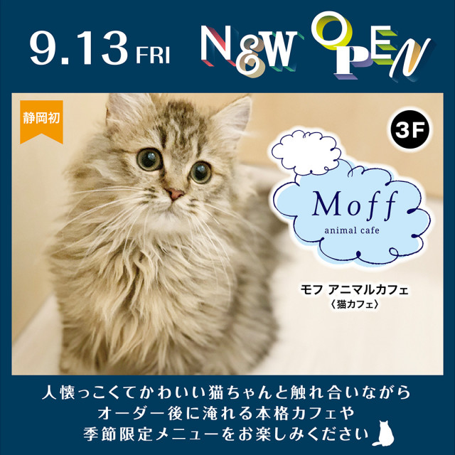Moff animal cafe NEW OPEN!