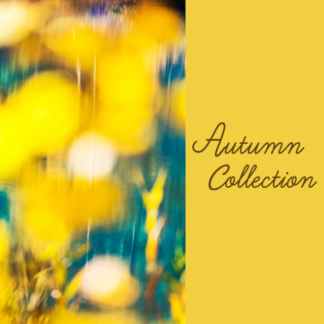 【津田沼PARCO】Autumn Collection