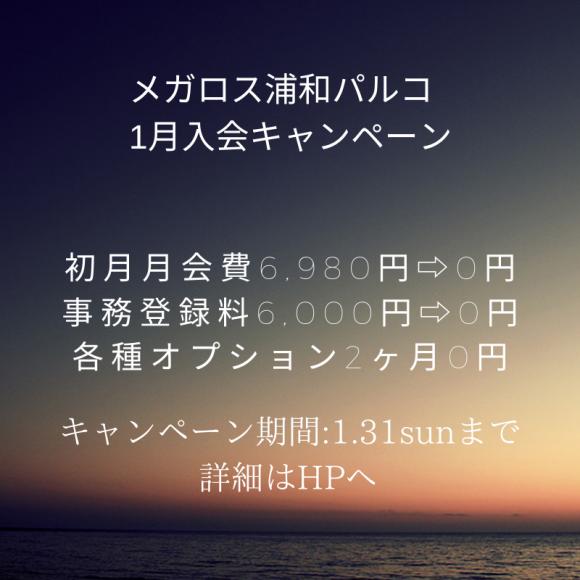 1月入会キャンペーン!