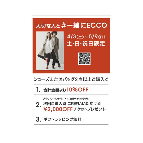 【土日祝限定】#一緒にECOO