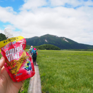 この夏は富士山へGO!
