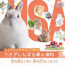 「うさぎしんぼる展 in 浦和」開催!