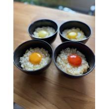 【期間限定ショップのお知らせ】幻の卵屋さん