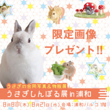【POCKET PARCO】うさぎしんぼる展限定画像プレゼント!