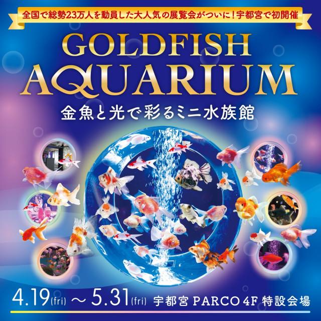 ~金魚と光で彩るミニ水族館~『GOLDFISH AQUARIUM』